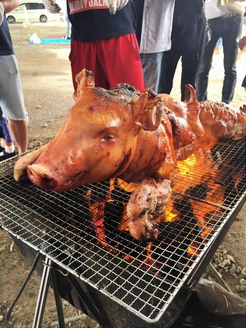 ワイルドバーベキュー/豚の丸焼き