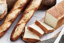 「おいしいパン」特集~注目の新商品から、隠れた名店まで