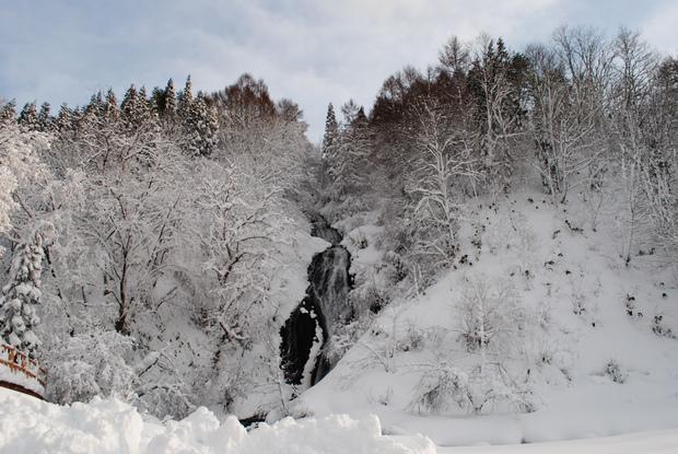 ca110bd13f13f ディズニー 少しも寒くないわ♪ エルサになれる 真冬の