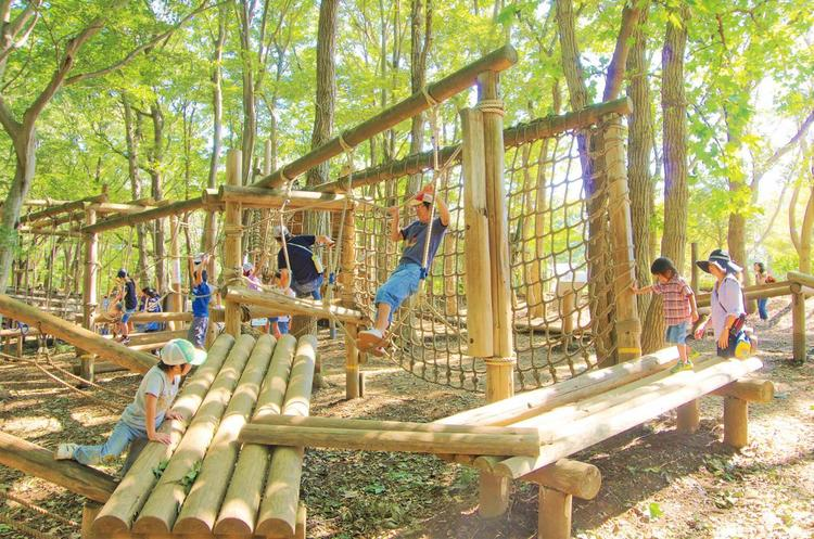 平和 の 森 公園 フィールド アスレチック
